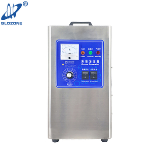 3g/5g Portable Ozone Generator for Water Treatment